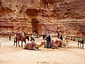 Jordan, Petra. Camels and people in front of Pharaoh's Treasury.jpg