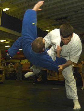 Judo01cropped.jpg
