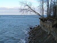 Kakumäe cliff.jpg