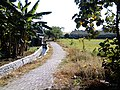 Kebon Waris, Pandaan, Pasuruan, East Java, Indonesia - panoramio.jpg
