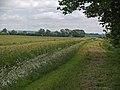 Kettleby Beck - geograph.org.uk - 1609671.jpg
