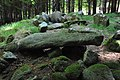 Kilmashogue Megalithic Site 1.JPG