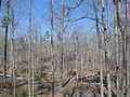 Kings Mountain National Military Park - South Carolina (8557771845) (2).jpg