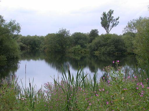 Kingsbury Water Park, Warwickshire - Andy Mabbett