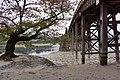 Kintai Bridge 錦帶橋 - panoramio (2).jpg