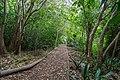 Kirstenbosch Botanical Garden-3127.jpg