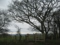 Kissing Gate on North Downs Way near Cold Blow Farm - geograph.org.uk - 1772021.jpg
