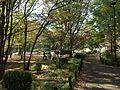 Kitanomaru Park 3.jpg