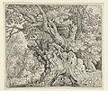 Knoestige bomen aan het water Knoestige bomen, RP-P-1878-A-1543.jpg