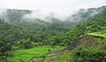 Konkan Railway - views from train on a Monsoon (3).JPG