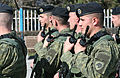 Kosovo Armed Forces Units.jpg