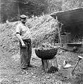 Kovač Črešnar Feliks ima pripravljeno smrečje za sežig kope, Boharina 1963.jpg
