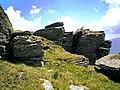 Kráľova hoľa - staviteľka Príroda - panoramio (1).jpg