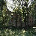 Kraszowice Ruiny palacu Bibranow 02.JPG