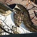 Kronach - Melchior-Otto-Platz 9 - Wappen - 2015-10.jpg
