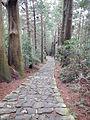 Kumano Kodo pilgrimage route Daimon-zaka World heritage 熊野古道 大門坂39.JPG
