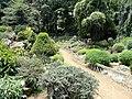 Kunming Botanical Garden - DSC03027.JPG