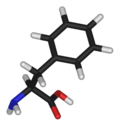 L-phenylalanine-3D-sticks.png