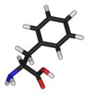 3D structure of L-phenylalanine