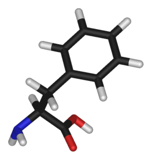 Phenylalanine (data page) - 3D structure of L-phenylalanine