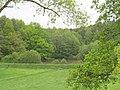 LSG Der Kesselgraben, 4, Bad Hersfeld, Landkreis Hersfeld-Rotenburg.jpg