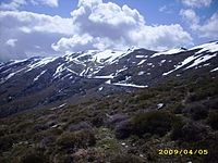 La cima del Bruncu Spina - 1829 m s.l.m. - Sardegna.JPG