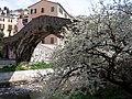 La primavera - panoramio.jpg
