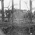 Lanceerinstallatie van Duitse V-1 raketten bij Almelo (Paradijsbos), Bestanddeelnr 900-2483.jpg