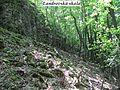 Landrovská skala v k.ú. Nová Bošáca.jpg