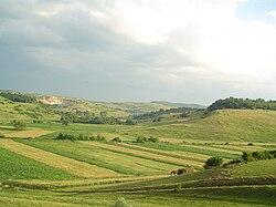 Landscape in Transylvania.jpg