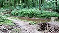 Landschaftsschutzgebiet Waldgebiete bei Dielingdorf und Handarpe LSG OS 00025 Datei 15.jpg