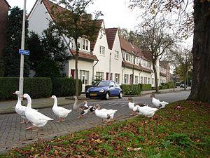 Vreewijk - Image: Langegeer
