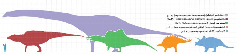 باتجاه عقارب الساعة: الترايسيراتوبس، مجسم لداينونيكوس (في الأعلى) ستيغوصور  (في الأسفل
