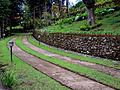 Lawn at Lake view Guest House.jpg