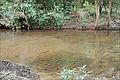 Les linga dans le lit de la rivière sacrée (Phnom Kulen) (6824988525).jpg