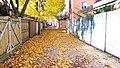 Les ruelles du Plateau à Montréal en automne - panoramio.jpg