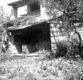 """Lesen """"čebenik"""" - čebelnak, Vrhpolje 1958.jpg"""