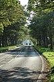 Lever Causeway from Little Storeton Lane 2.jpg