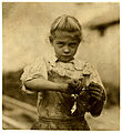 Lewis Hine, 7-year old Rosie, oyster shucker, Bluffton, South Carolina, 1913.jpg