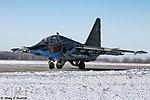 Lipetsk Air Base (434-20).jpg