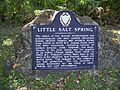 Little Salt Springs FL marker01.jpg