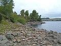 Loch Bradan Shoreline - geograph.org.uk - 533965.jpg