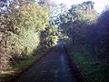 Lodge Lane - geograph.org.uk - 252837.jpg