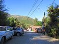 Los Queñes en Verano (9676592452).jpg