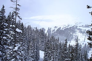 Loveland Ski Area - The view from Chair 1 at Loveland Ski Area.