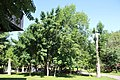 Lovers' Park, Yerevan, Armenia.jpg
