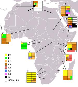 Macro-haplogroup L (mtDNA) - Image: Macrohaplogrupo L en África