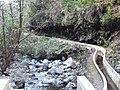 Madeira3 019.jpg