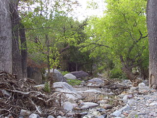 canyon in the northwestern face of the Santa Rita Mountains