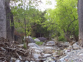 Madera Canyon - Image: Madera Canyon Arizona 2012